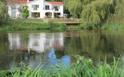 Wildlife Dream – A Touch of Spain on the Hampshire Dorset Border