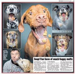 Christian Vieler Josera dog photographs appear in The Times UK