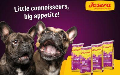 Josera launch Mini range for small dogs.