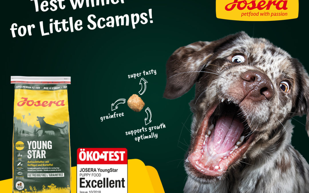 Top Award for Josera Dog Food