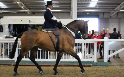 The Side Saddle Association Announces International Side Saddle Celebration Weekend.