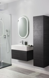 Elite Anthracite from bauhaus-bathrooms.co.uk with tower unit and shower